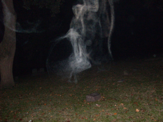 An entity taking the form of ectoplasm