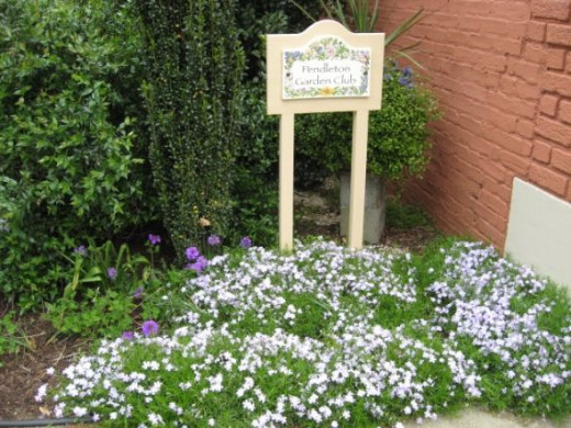 The Pendleton Garden Club now maintains the courtyard and appreciates help from anyone who is interested