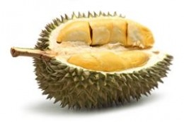 Iconic Singapore Fruit - The Durian