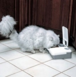 Two meal electronic pet feeder