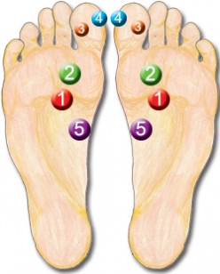 Reflexology - 5 power points