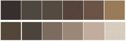 Brown color swatches