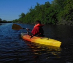 Canoeing And Kayaking On The Fox River