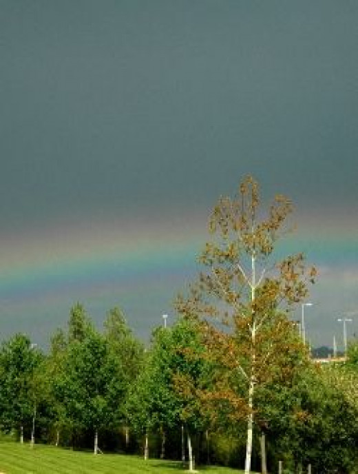 Dreamstime Photo of Rainbow