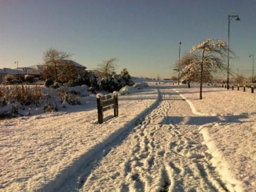 The reserve in snow