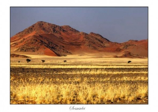 landscape by D Woollacott