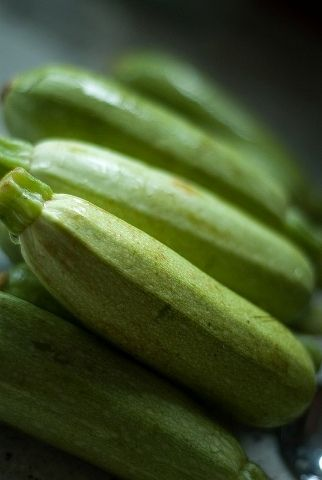 Oh those zucchini!