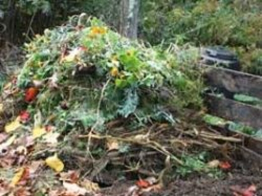 Layered Compost Pile