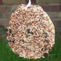 Very Easy Bagel Bird feeder
