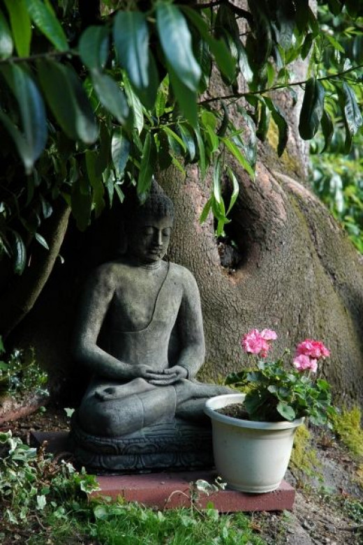 Learn To Meditate On Your Staycation
