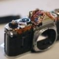 A Rugged Digital Camera