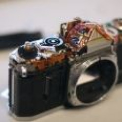 A Rugged Digital Camera