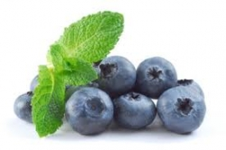 Keep Blueberries Fresh