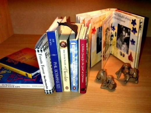 my mini books