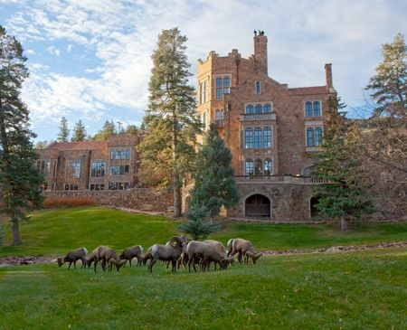 Glen Eyrie Castle with frequently visiting Big Horn Sheep
