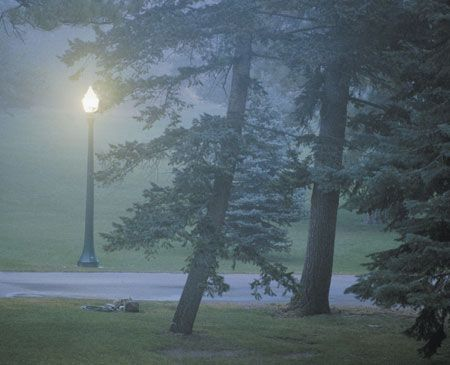 Glen Eyrie in fog