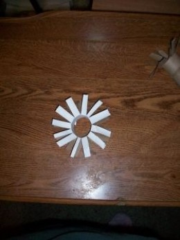 DIY Cat Toy from Toilet Paper Roll