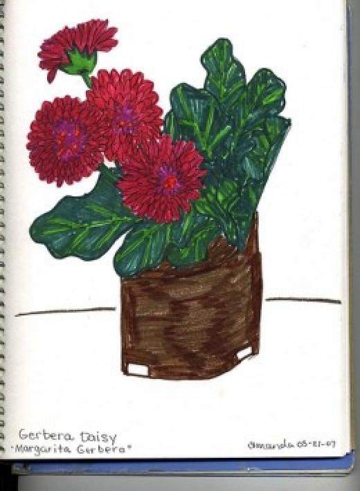 Flower Pot Still LIfe markers nature journal