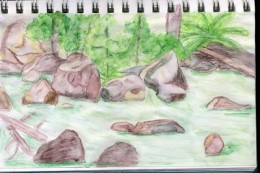 watercolor example nature journal