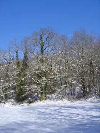 A Sunny Snowy Day at Videix, Limousin, France