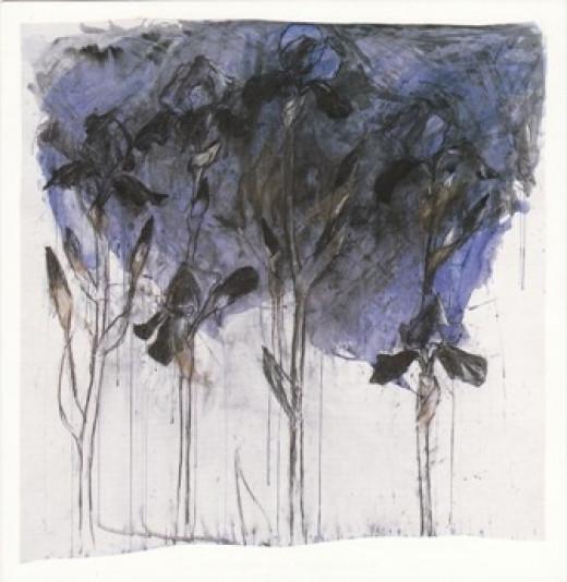 Black Irises by Barbara Walton