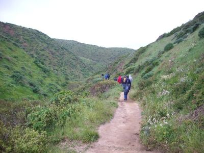 Hiking at Pt. Reyes