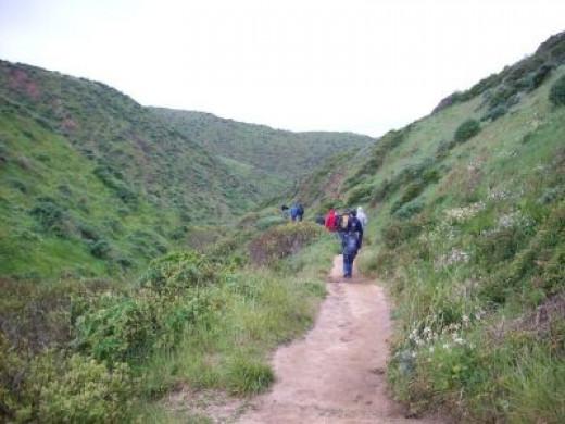 Hiking at Pt. Reyes