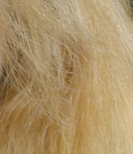 This is my hair after stripping from natural dark brown. Not bad and ready for toner.