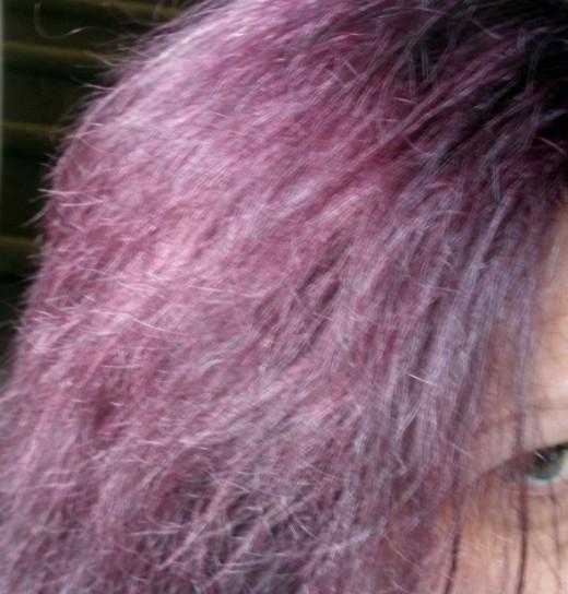 Burgundy Hair Fade