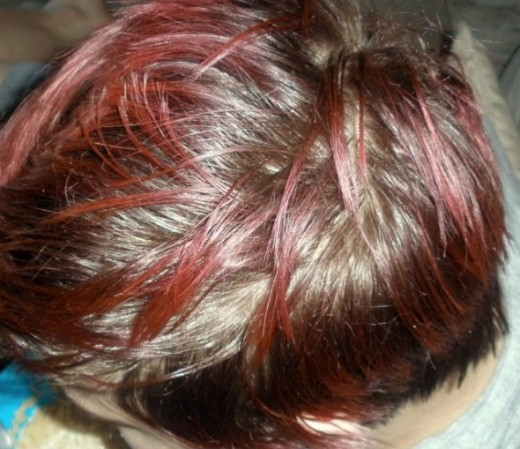 Em's hair was a faded brownish color with reddish tipped pieces. She wanted blonde.