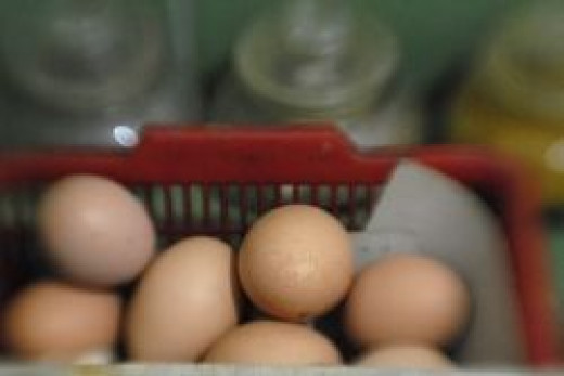 Brown Chicken Eggs by modomatic