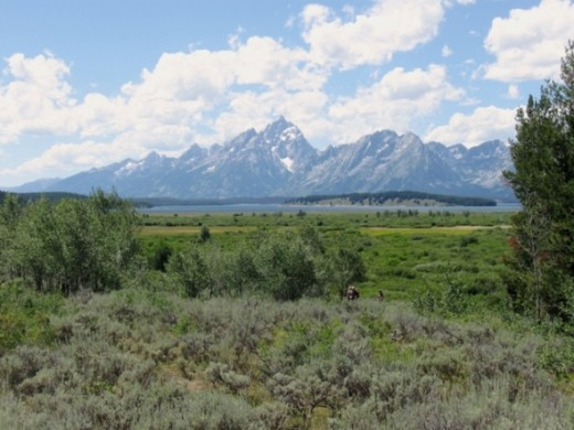 The Grand Tetons in the distance.