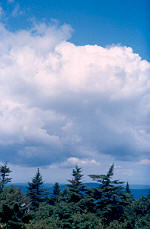 Watching the clouds from the summit of Mt. Greylock