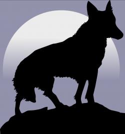 wolf-or-werewolf?