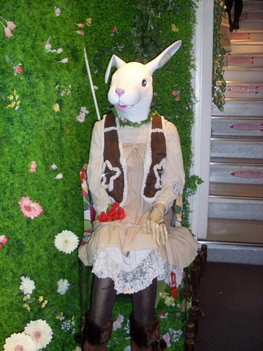 You you can dress like a cute bunny rabbit.