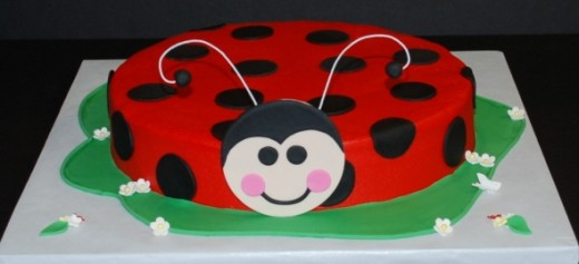 Ladybug Birthday Cake ©cjmjcrlm (Rebecca) on flickr.com