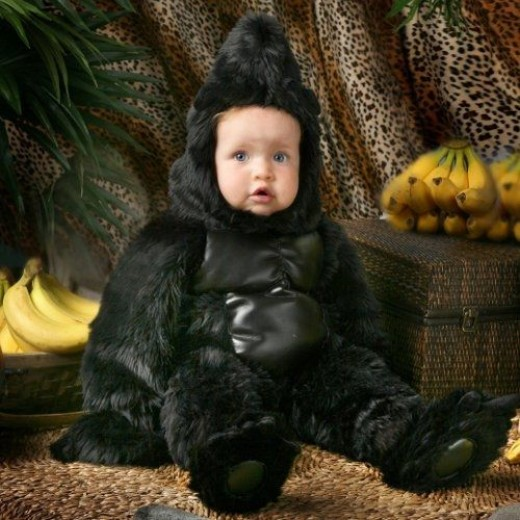 Toddler Bigfoot Costume - When Bigfoot costumes are scarce, a gorilla or monkey costume can work, especially on the little ones!