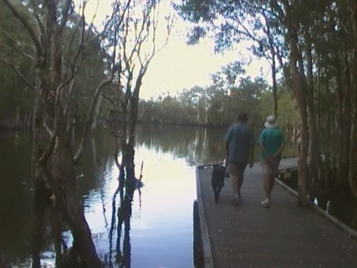 Lake walk at Rochedale