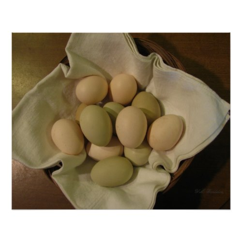 Our hens lay green, blue and pink eggs that are healthier and more nutritious than store bought eggs. My hens lay an egg every other day, so two or three hens can keep a small family with a good supply.