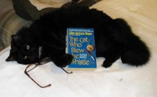 I, Star Noir, recommend the Cat Who Books