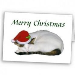 Razzle Zazzle Christmas Gifts