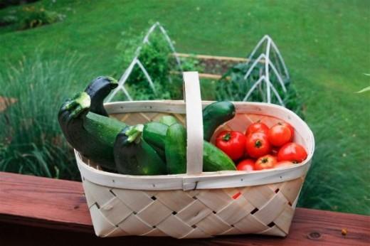 July 6 Vegetable Garden Harvest