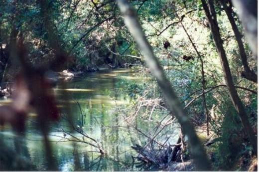 Tchefuncte River