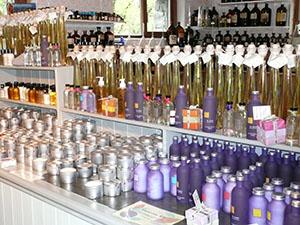 Perfumery shop