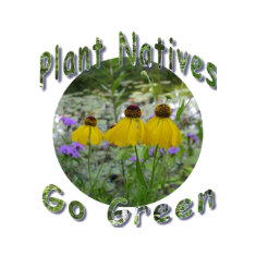 Plant Natives Go Green by naturegirl7