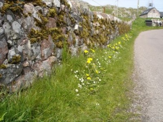 Walking to Iona Abby, Another 'Main Street'