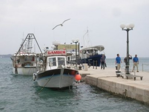 Excursion boats leave for Brijuni islands from this port