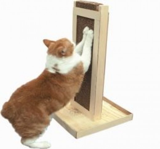 Cat Claws Deluxe Stand Up Scratcher