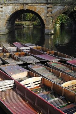 Punts nestled under Magdalen Bridge