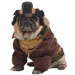 Click the image to browse Mr. T dog costumes!